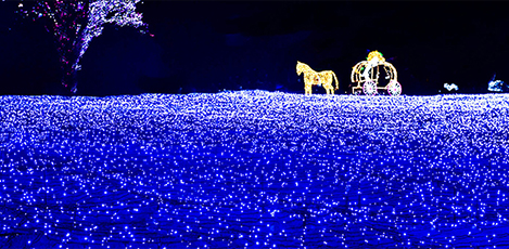 Romantic Evening Out at Lighting Festivals around Seoul