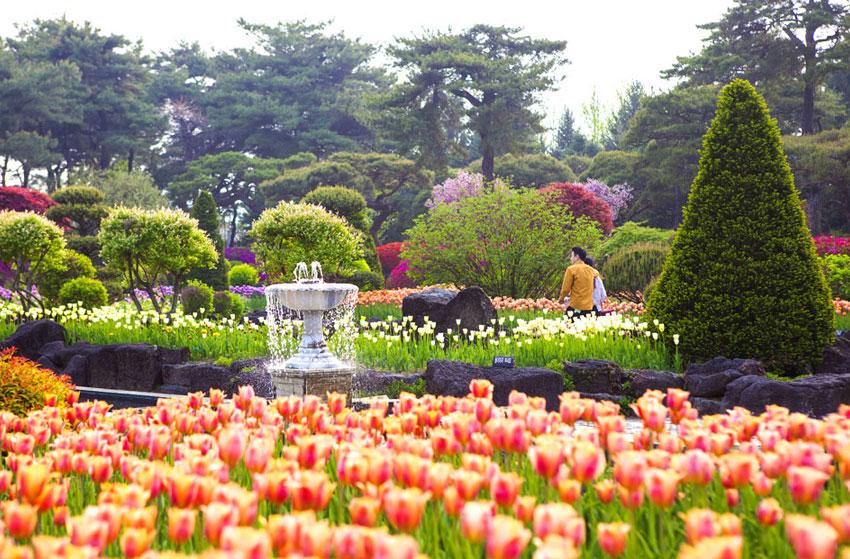 Jardín Botánico Byeokchoji
