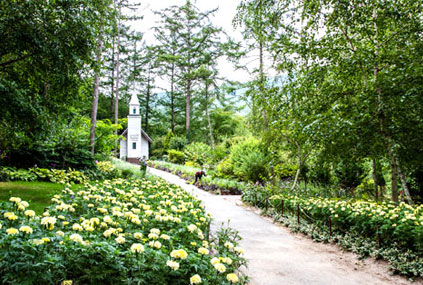 Arboreto Achimgoyo