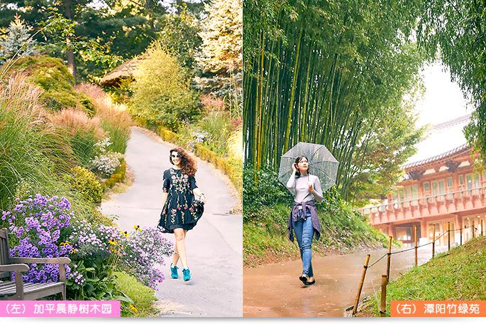 (左) 加平晨静树木园, (右) 潭阳竹绿苑