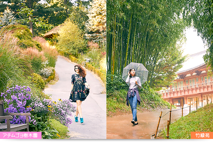 加平・アチムゴヨ樹木園(左)と潭陽・竹緑苑(右)