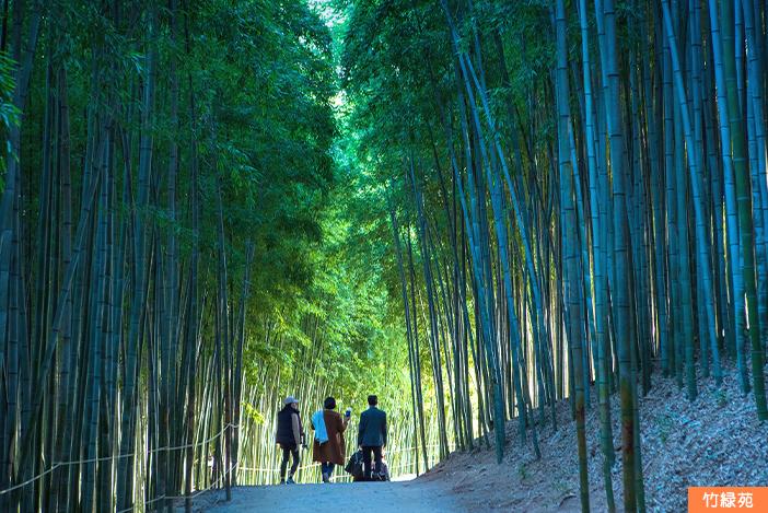 潭陽・竹緑苑(上)と加平・アチムゴヨ樹木園(下)