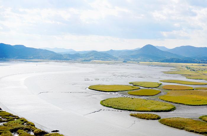 Espectacular paisaje del humedal de la Bahía de Suncheonman, visto desde el Observatorio Yongsan