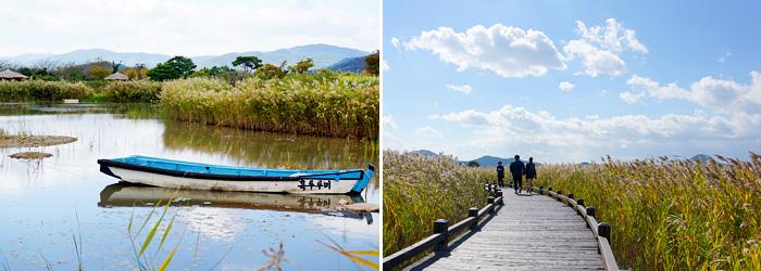 Un estanque tranquilo en los humedales de la bahía de Suncheonman (izquierda) / Sendero a lo largo de un campo de juncos (derecha).