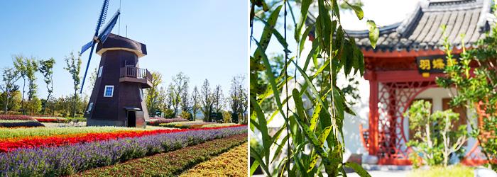 Jardín Holandés (izquierda) / Jardín Chino (derecha).