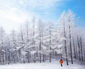 Pyeongchang, la ciudad de la naturaleza y de los Eventos Deportivos de Invierno 2018