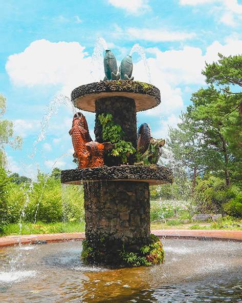 洗美苑莲花文化体验教室附近的莲池和喷水
