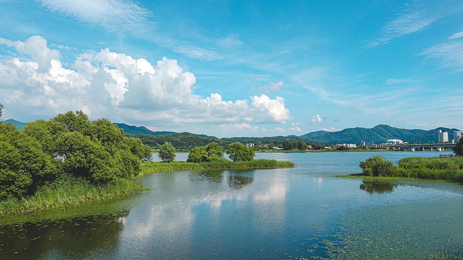 船渡洞桥 (a ferry bridge)上望到的江水风景