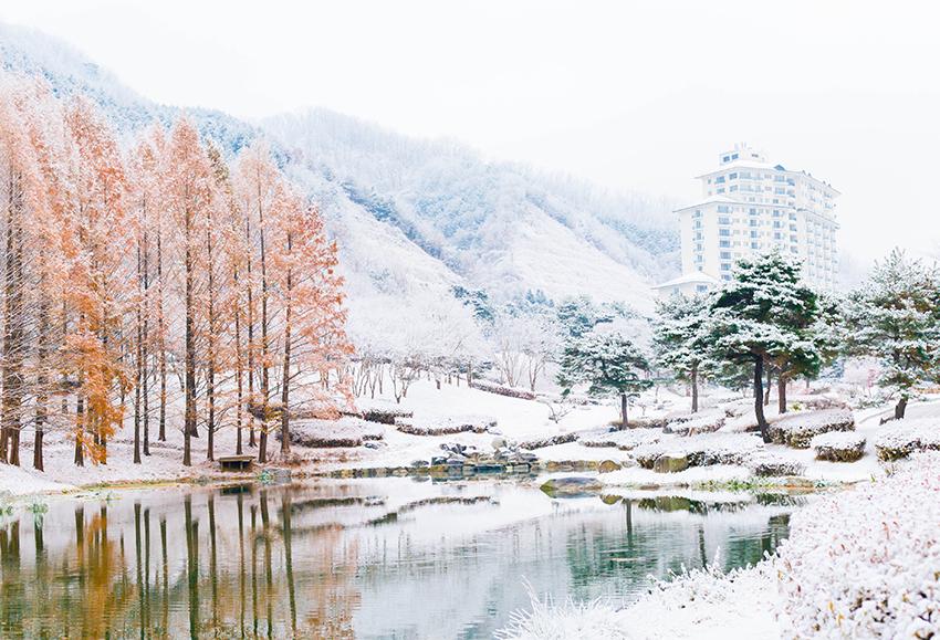 伊利希安江村渡假村 (圖片來源 : 伊利希安江村)