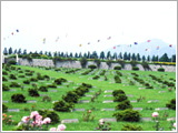 The United Nations Memorial Cemetery and Peace Park