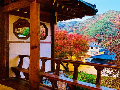 [Hapcheon, Dals Garden] World Knowledge Carved in Millenium Hapcheon