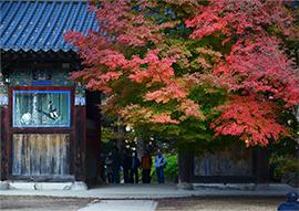 Fotos) Tempel Woljeongsa