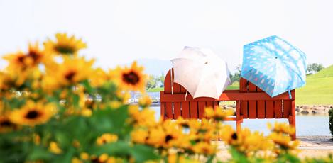 夏の涼しさ求めて順天へ、<br>順天シティツアーバスの旅!