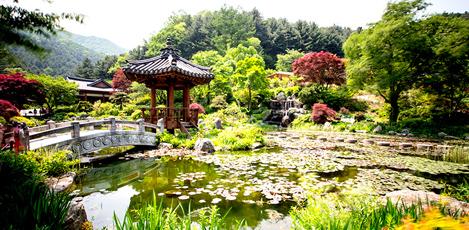 ソウル近郊・美しい癒しスポットを歩く