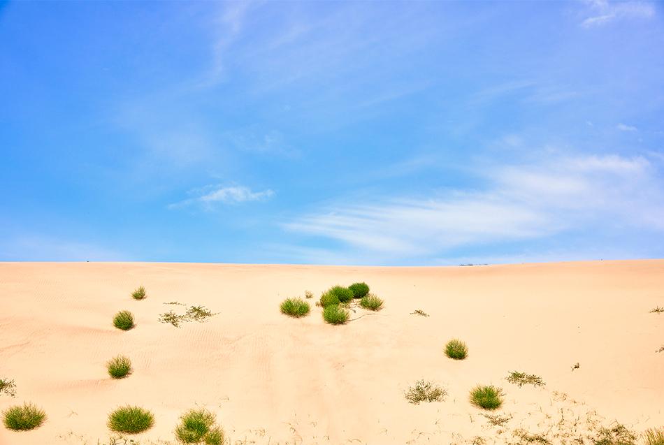 Sindu-ri Coastal Sand Dune