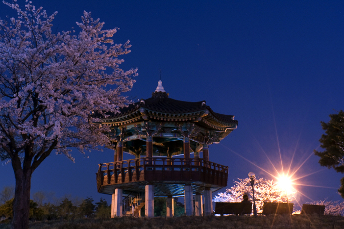 Ilsan Lake Park (Credit: Ilsan Lake Park)