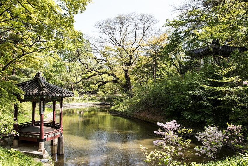 Павильон Квалламчжон в Тайном саду дворца Чхандоккун