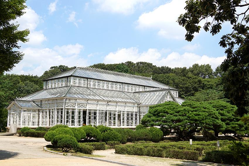 Оранжерея во дворце Чхангёнгун