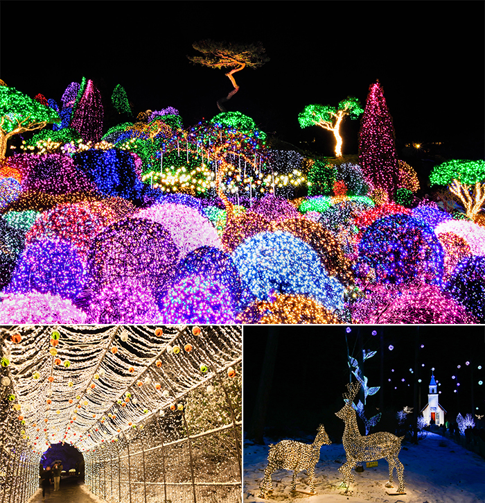 Exclusive Lighting Festivals Near Seoul!