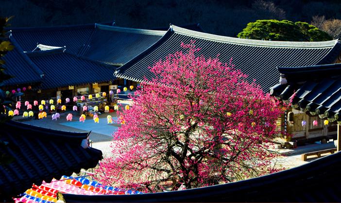 Templo Hwaeomsa