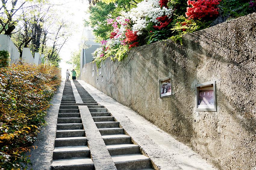 Escaleras del Movimiento de la Independencia del 1 de marzo (Cortesía de la Oficina Jung-gu de Daegu)