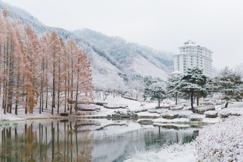 伊利希安江村渡假村(圖片來源: 伊利希安江村)