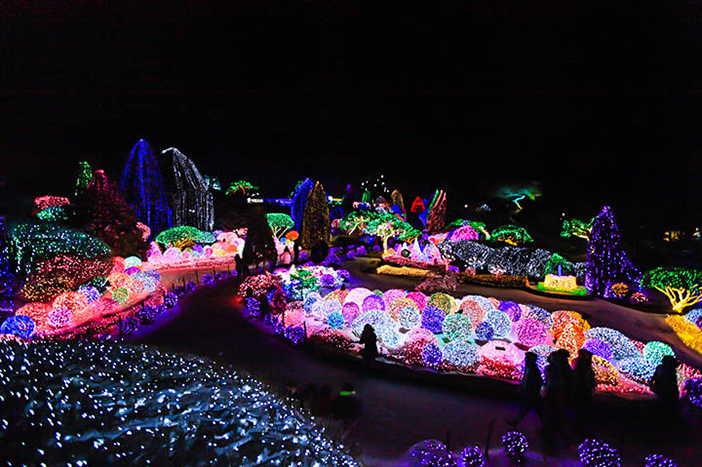 Photo: Scenery of the colorful Lighting Festival (Credit: The Garden of Morning Calm)
