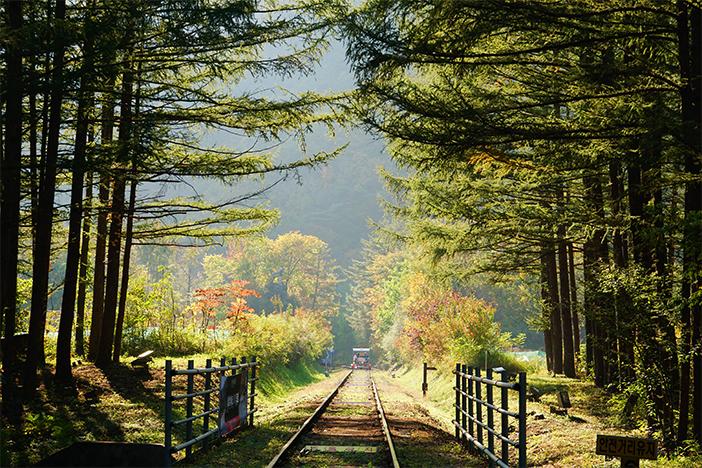 Fall scenes at Jeongseon Railbike