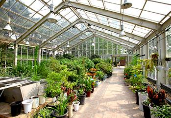 緑の柱の庭園