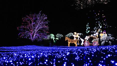 ソウル近郊で開かれるユニークな光祭り!