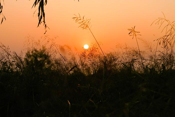 圖片) 彩霞公園的夕陽(西部公園綠地事業所提供)