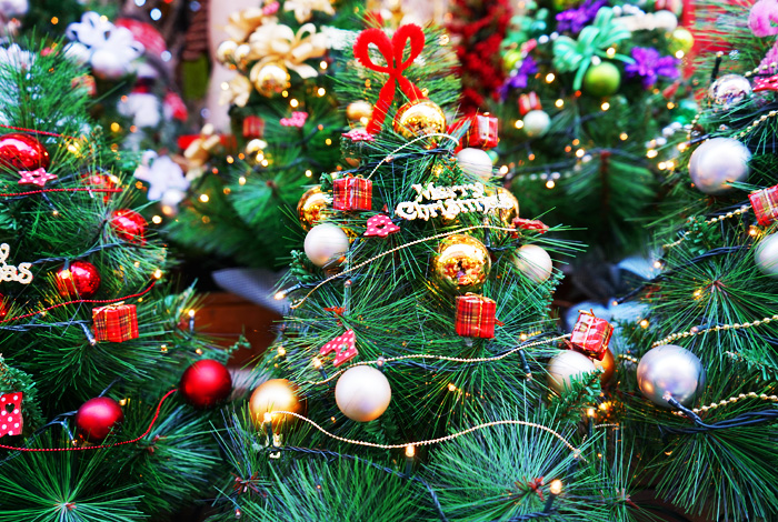 Christmas trees decorated in various colors