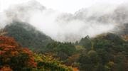 Herbst in Sokcho & Yangyang