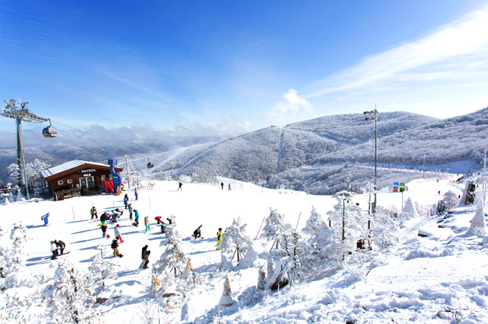 Skipiste in Korea (Quelle:  High1 Ski Resort)