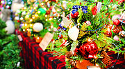 Les lieux les plus romantiques durant Noël