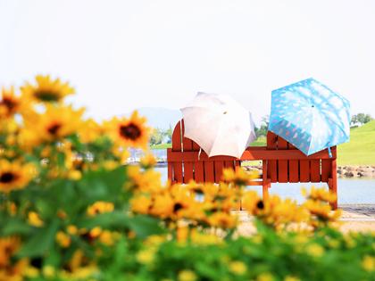 ¡Disfrute de Suncheon a bordo del City Tour!