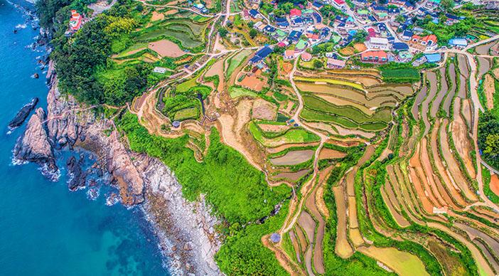 Daraengi Village (top), Daraengi rice paddies (bottom left; credit: Namhae Mirae News) & Daraengi Jiget-gil Trail (bottom right; credit: Namhae-gun Office)