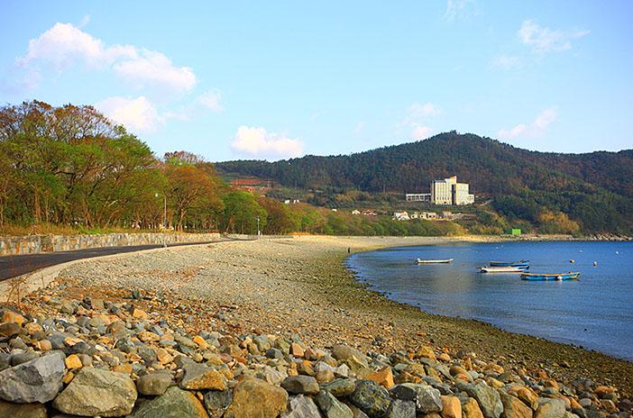 防潮魚付林(左下、提供:南海未来新聞)