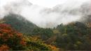 Горы Сораксан в Сокчхо и Яняне: Великолепие осенних листьев и морского пейзажа в одном путешествии
