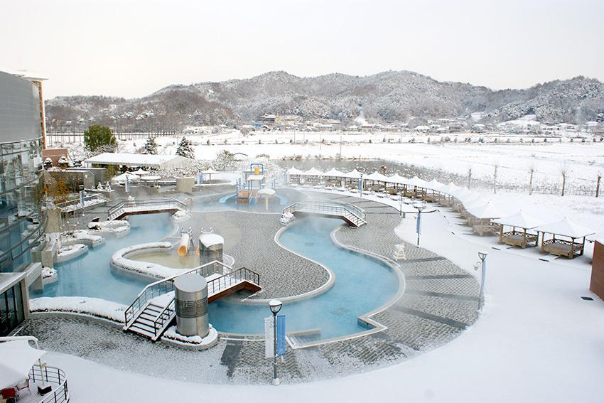 Paradise Spa Dogo (Источник: Paradise Spa Dogo)