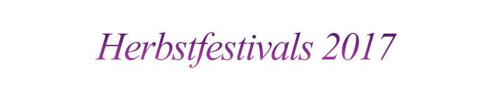 Internationales Feuerwerksfestival Seoul (Quelle: Hanhwa)