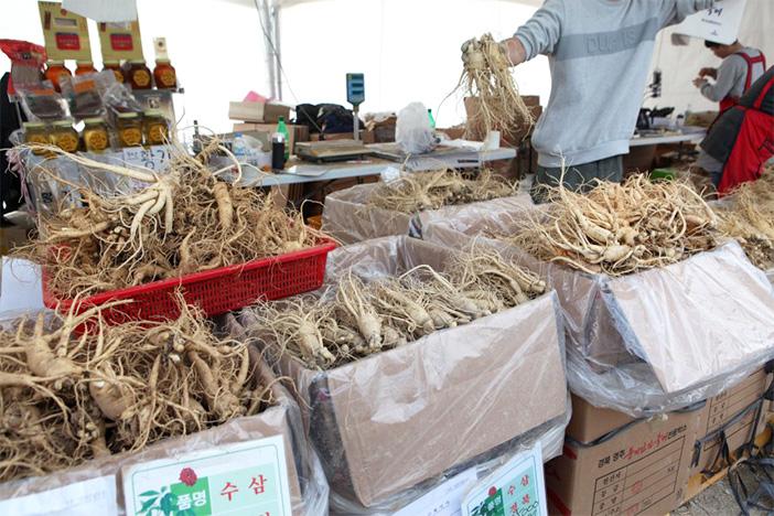 Yeongju Punggi Ginsengfestival (Quelle: Yeongju Punggi Ginseng Festival)