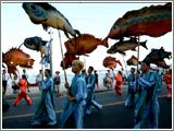 usan Gijang Anchovy Festival