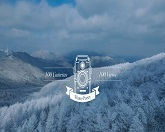 100 Cameras, 100 Views [Winter Poetry]