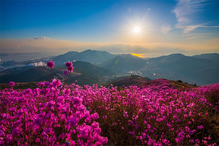 Yeongchwisan Mountain