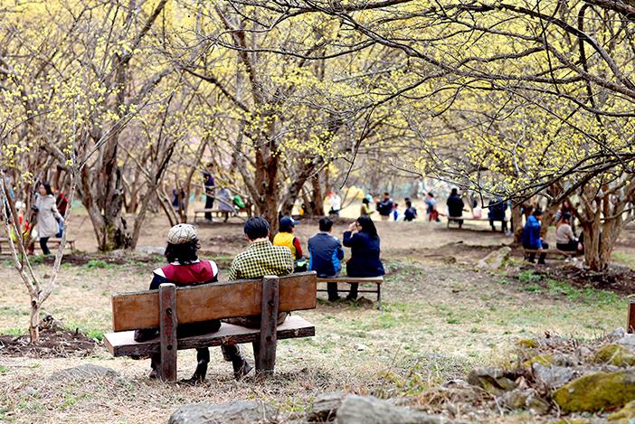 Icheon Sansuyu Village (Credit: Icheon-si)