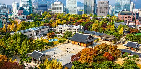 在首尔市中心的秋季丹枫路上闲庭信步