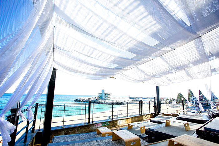 Bossa Nova rooftop terrace and popular menus