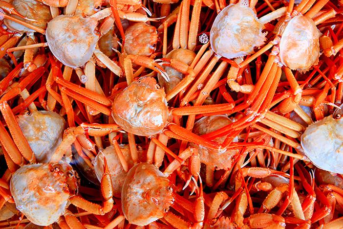 蔚珍竹蟹和红蟹庆典