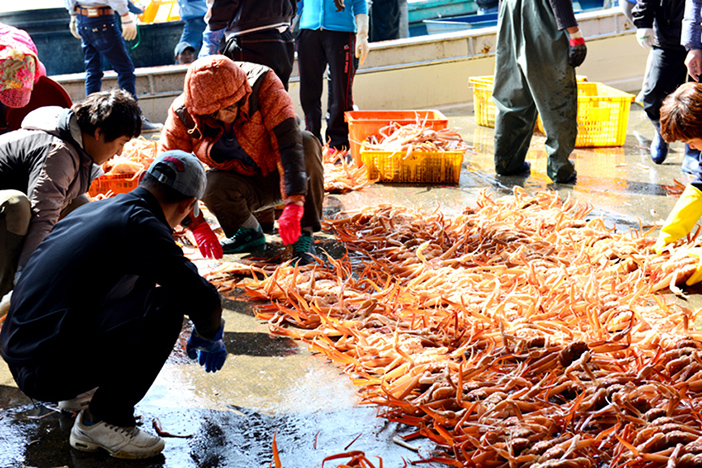 Yeongdeok Snow Crab Festival (Credit: Yeongdeok Snow Crab Festival Promotion Committee)